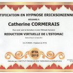 Certificat reduction virtuelle de l'estomac nantes
